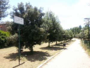 sfalcio parco nobile
